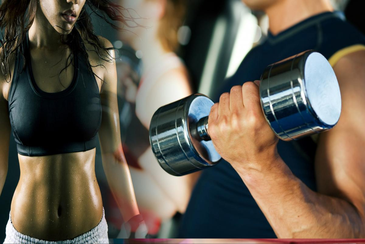 Workout and Fitness News